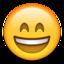 smile.fcf7247755f5fa248687.png